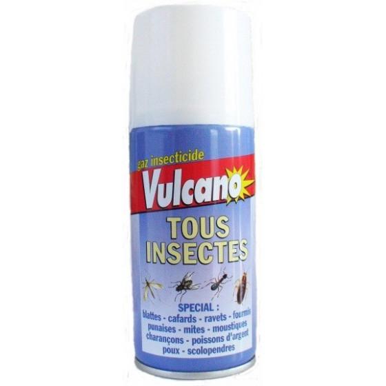 Gaz insecticide auto-vidant Vulcano